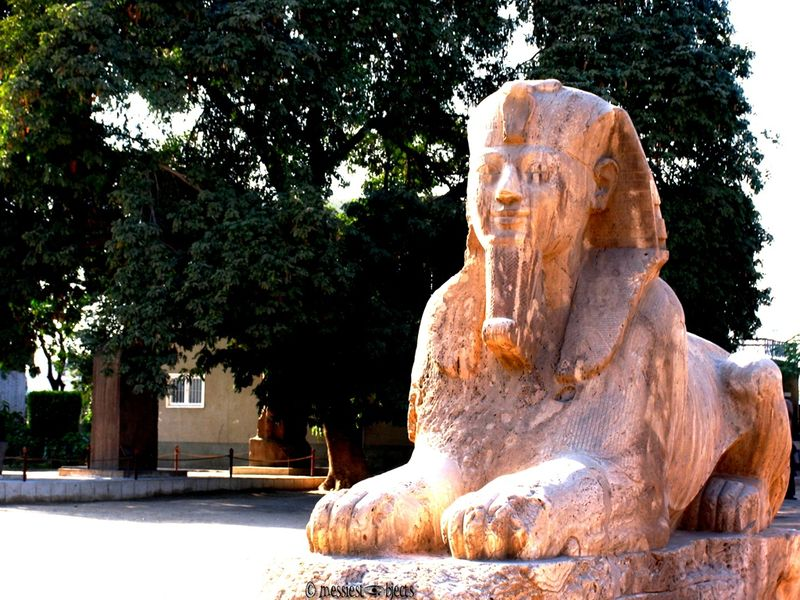 Memphis5 Sphinx of Memphis